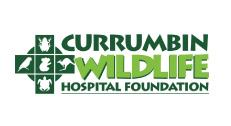 currumbin-wildlife-hospital-foundation